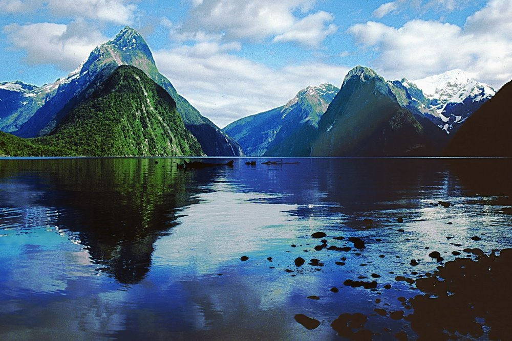 Milford Sound Cruise & Tour - From $199 NZD per person