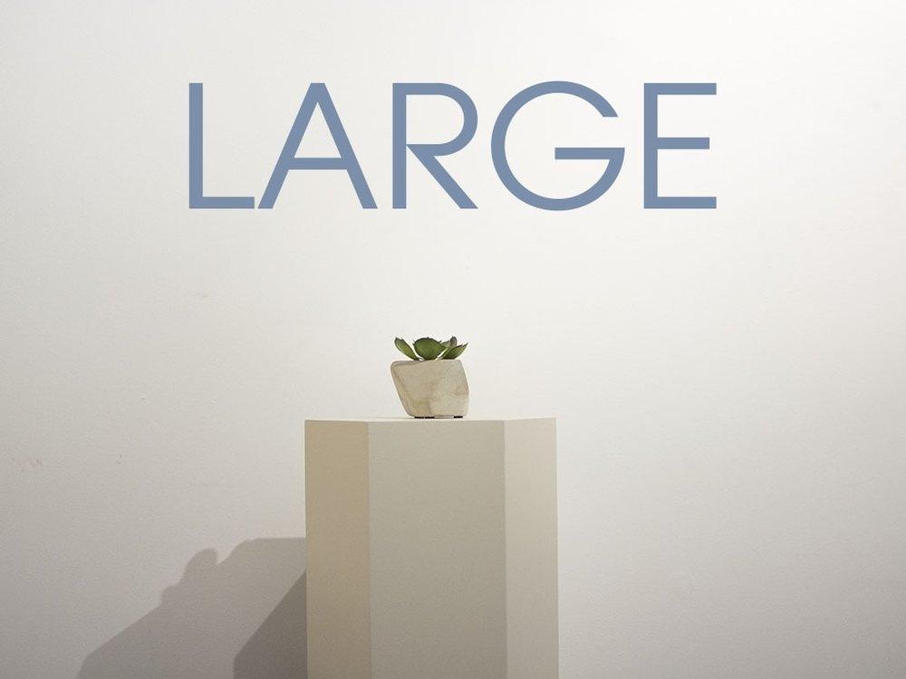 LARGE.jpg