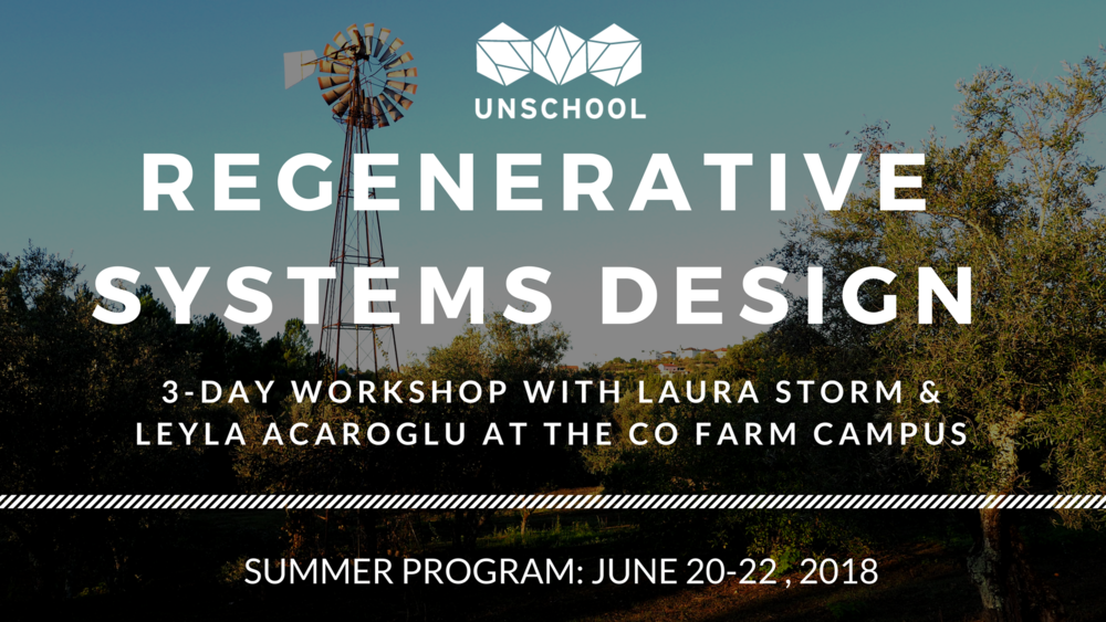 regenerative systems change workshop