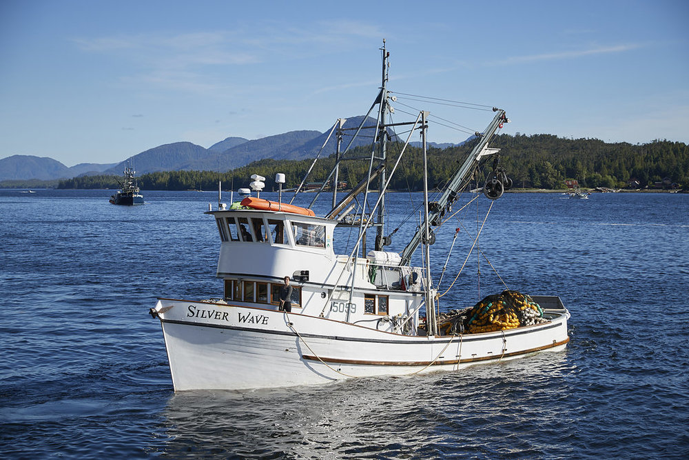The Boat - Our Fishing Vessel (F/V), the Silver Wave is a soulful 1967 wooden fishing boat. She has a lot of grit, charm and beauty. Her trusty aluminum skiff, which directs the boat's net to bring in the catch, is aptly named the 'Silver Surfer'. In Alaska,