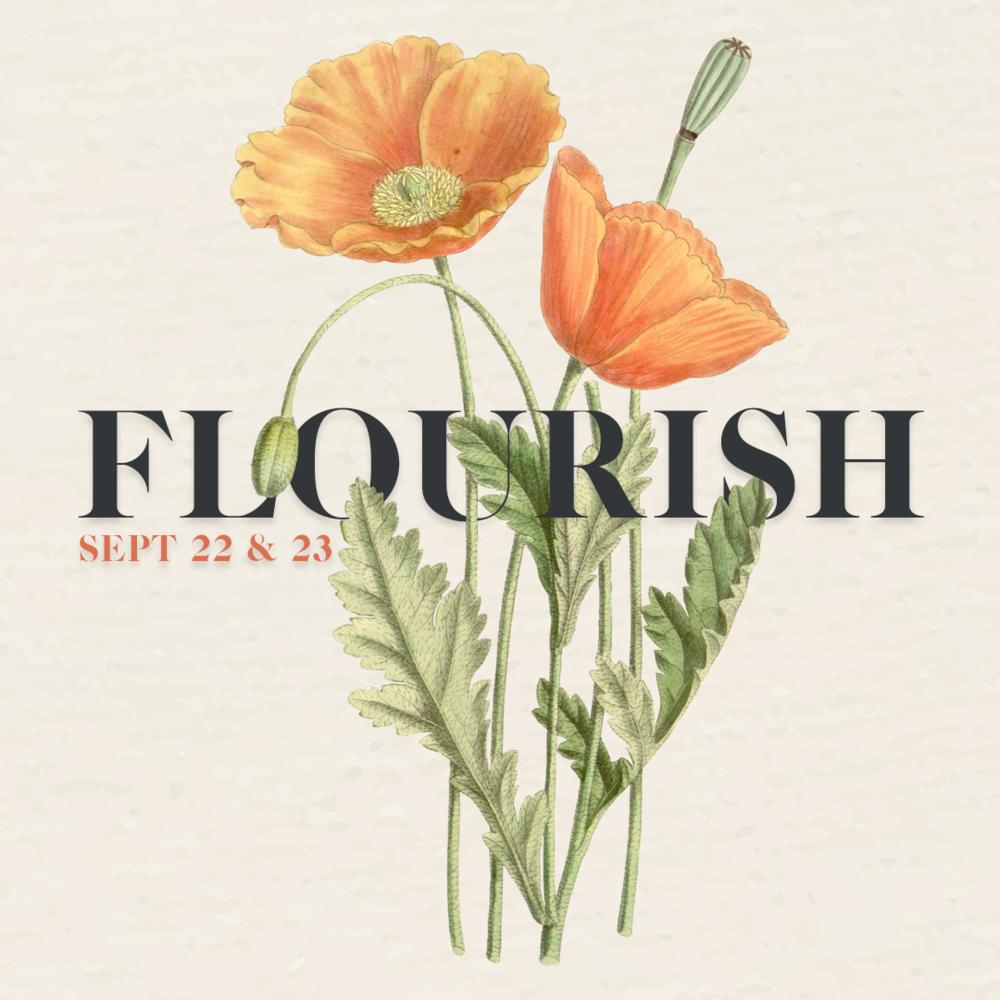 FlourishDraft3.png