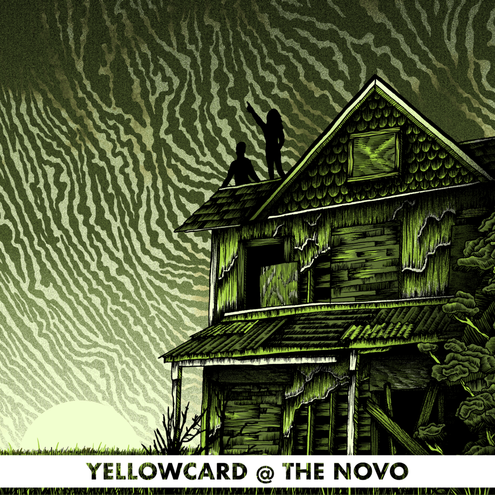 YC NOVO 2.png