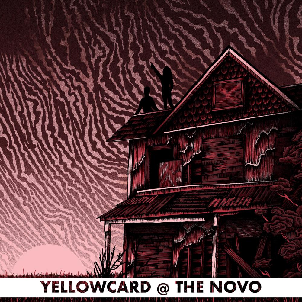 YC NOVO.png