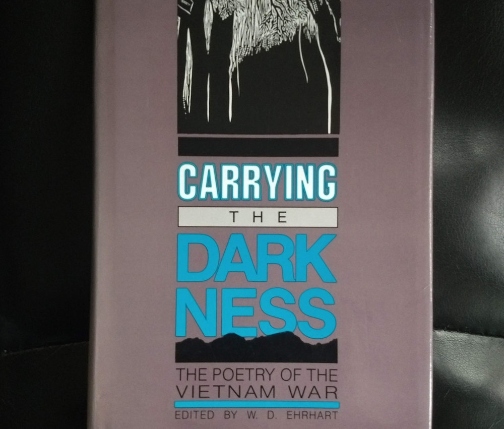 Carrying the Darkness Cover.jpg