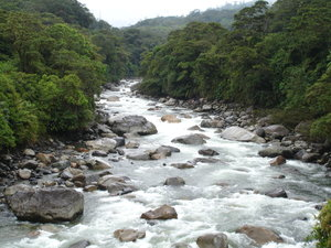 Living Andean Rivers.JPG