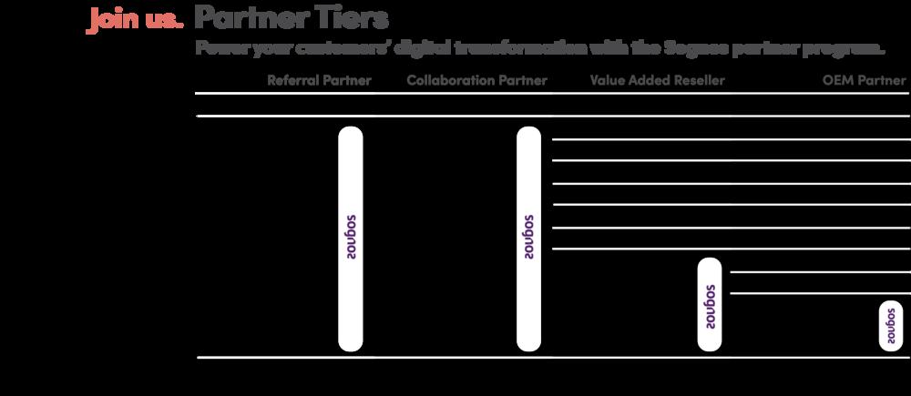 Partner Tiers Web 2.png