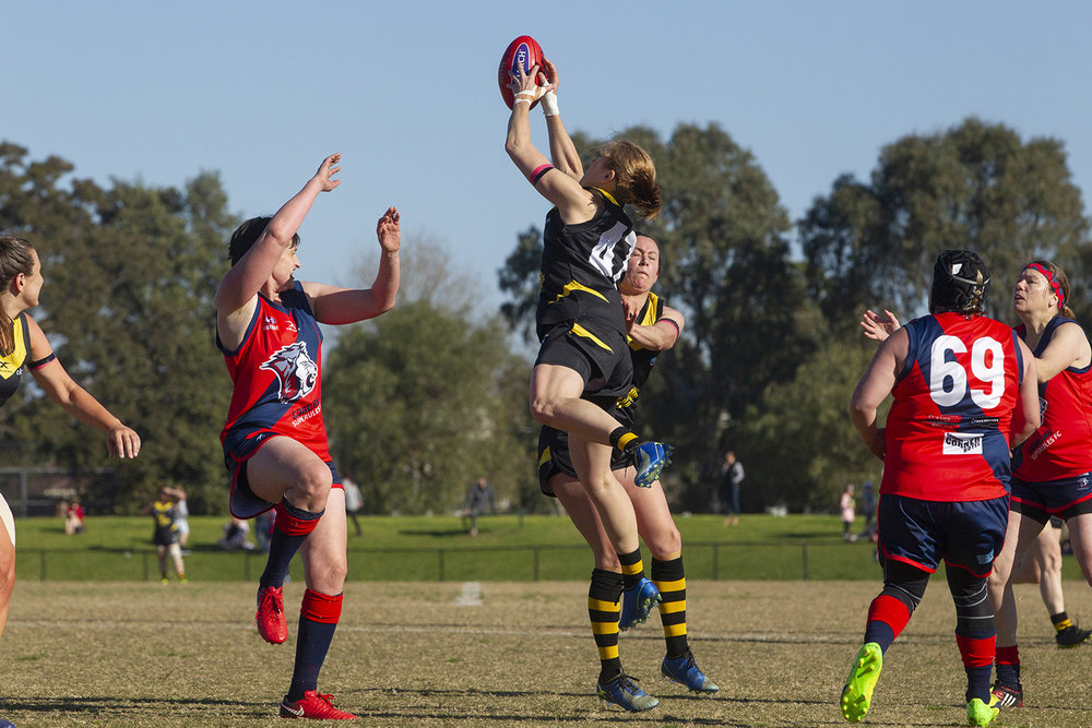 In the last game of the inaugural season for the Waverley Warriors Women's Masters team Robyn Nichols flew high for this strong mark. It was a season where the whole team reached for a bigger challenge.