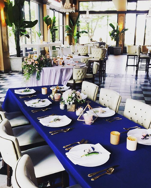 🌿 Picking a gorgeous location makes styling an event almost effortless. 🌿 #events #eventplanning #eventplanner #planner #organizer #coordinator #blue #linens #decorating #accessories  #minneapolis #minnesota #weddings #westelm #terrariums #candles #floral #royalblue #blush #styledshoot #foreverbride