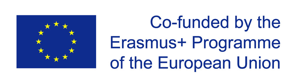 eu_flag_co_funded_pos_[rgb]_right (3).jpg
