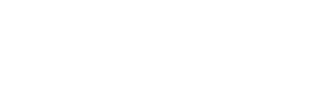 Basis white logo copy 2.png