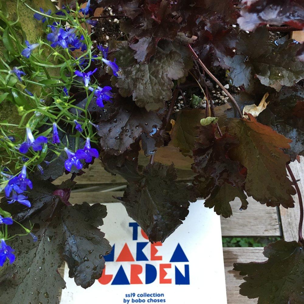 Bobo Choses To Make A Garden inspiration