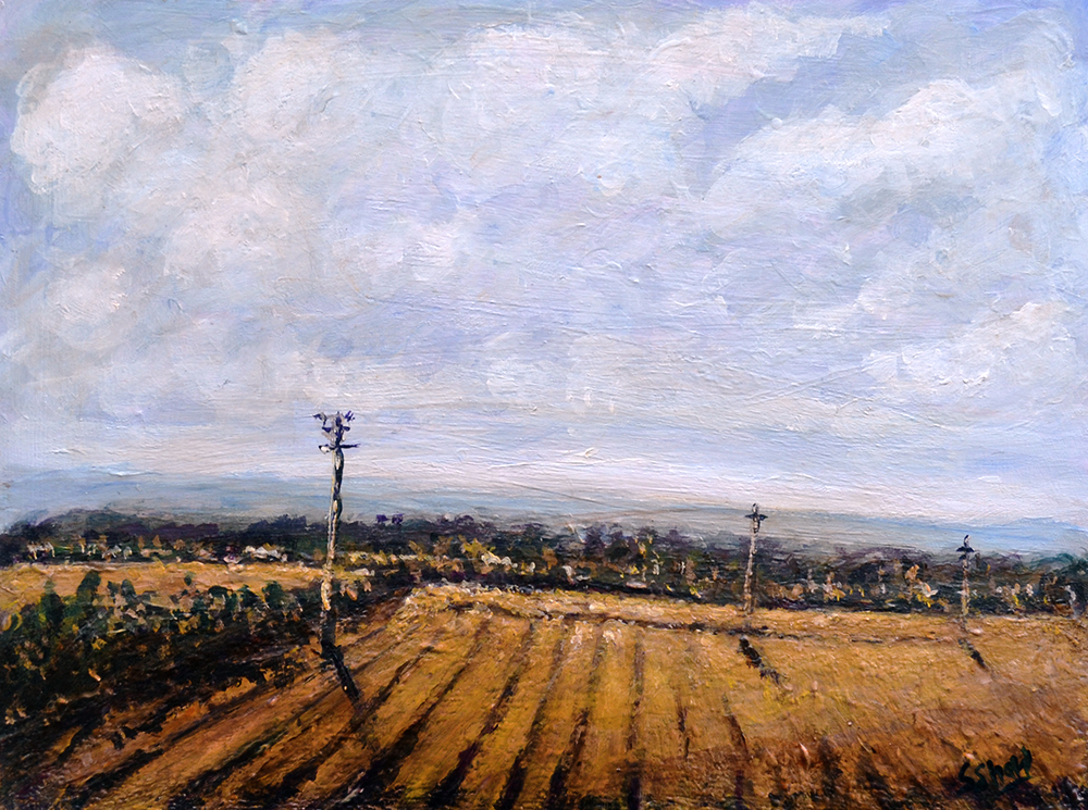 Stephen Shaw-Ploughed Field.jpg