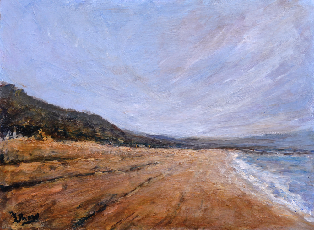 Stephen Shaw-Windy Beach.jpg