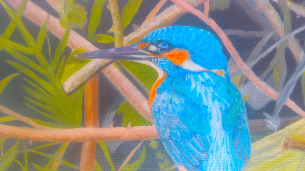 Anne Blanc kingfisher (oil).jpg