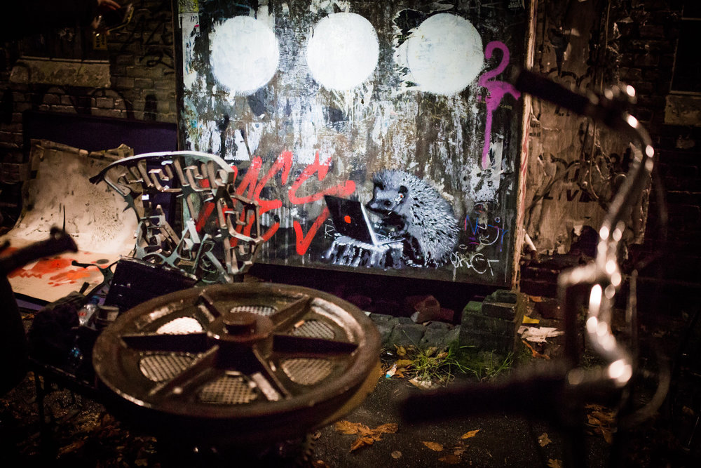 Copenhagen_Christiania_Hedgog_9.jpg