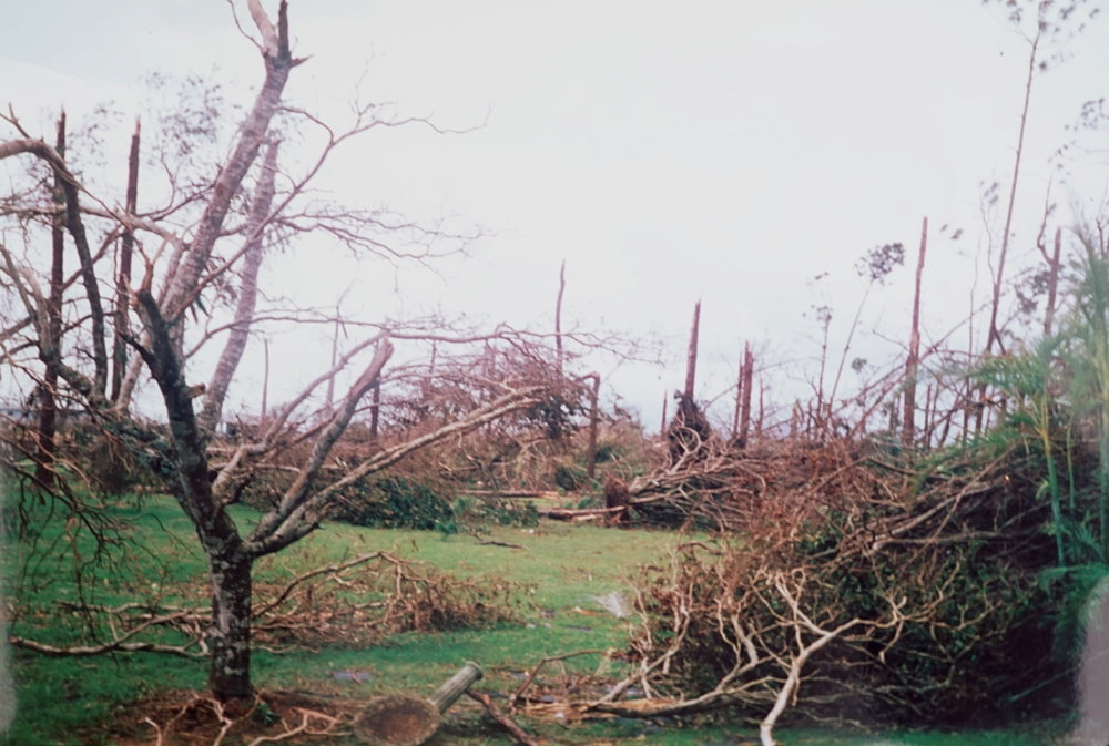 Huricane Andrew left little choice for Sal and Theresa to make of the land what they could.