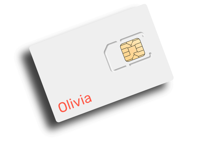Empty Sim Card_elevated_olivia.png