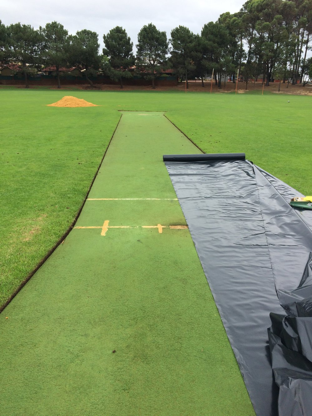 Natural protection for artificial cricket wickets