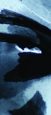 Eyes-detail_3.jpg