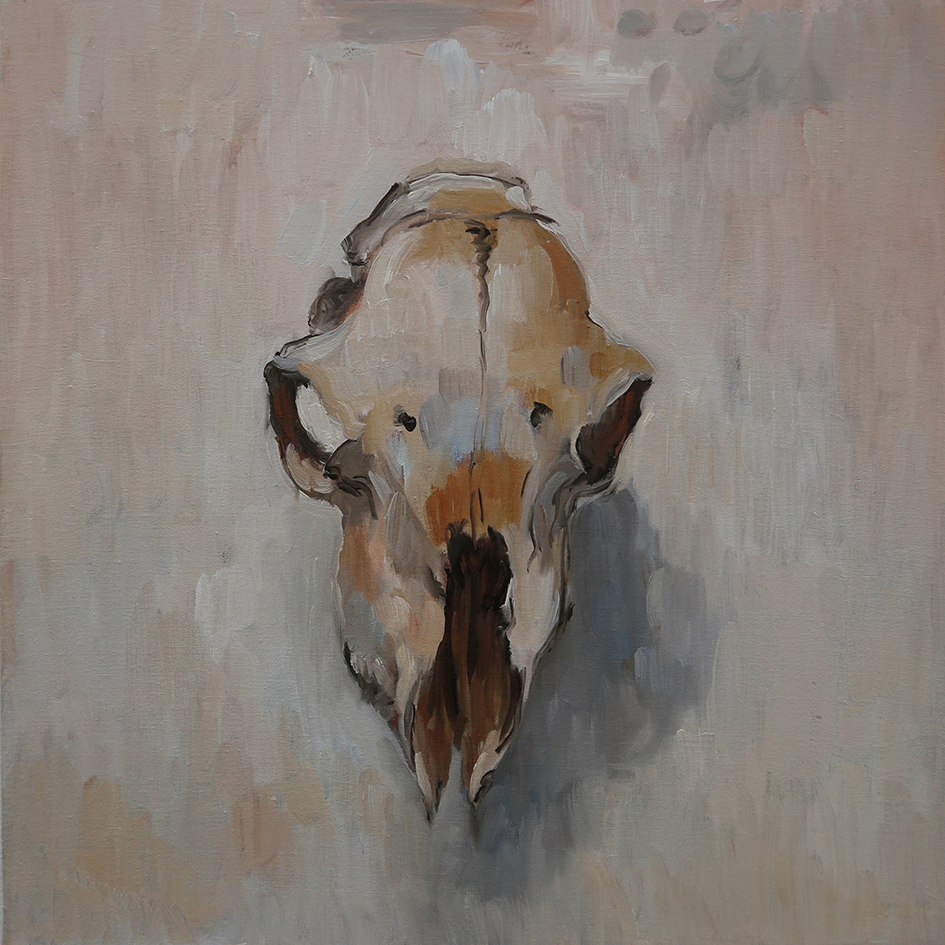 sheep skull new.jpg