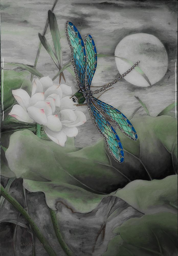 Jewelled Dragonfly (s)[1].jpg
