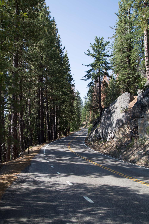_MG_2773__63_Yosemiteweb_1500.jpg