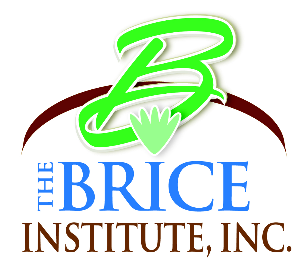 The Brice Institute, Inc.