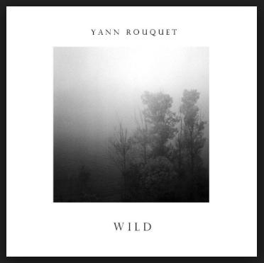Wild (EP) - Released February 3, 2016