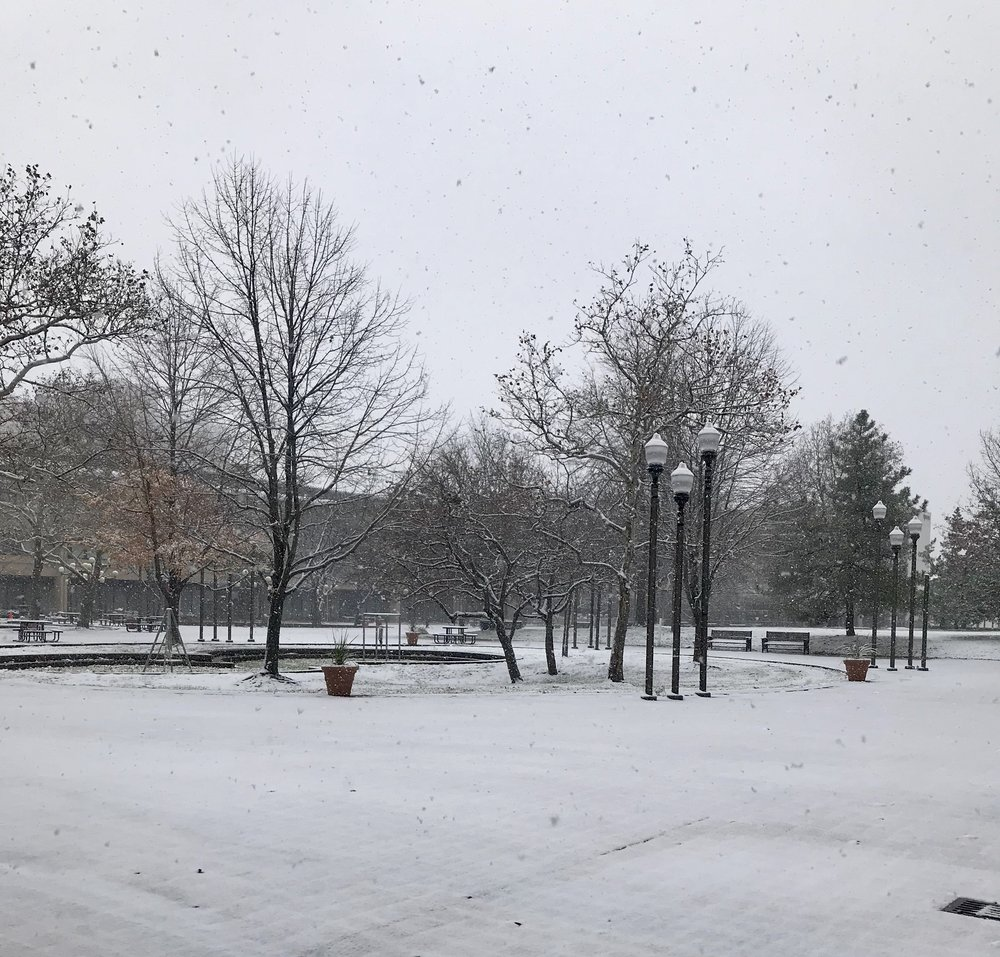 First snow on campus