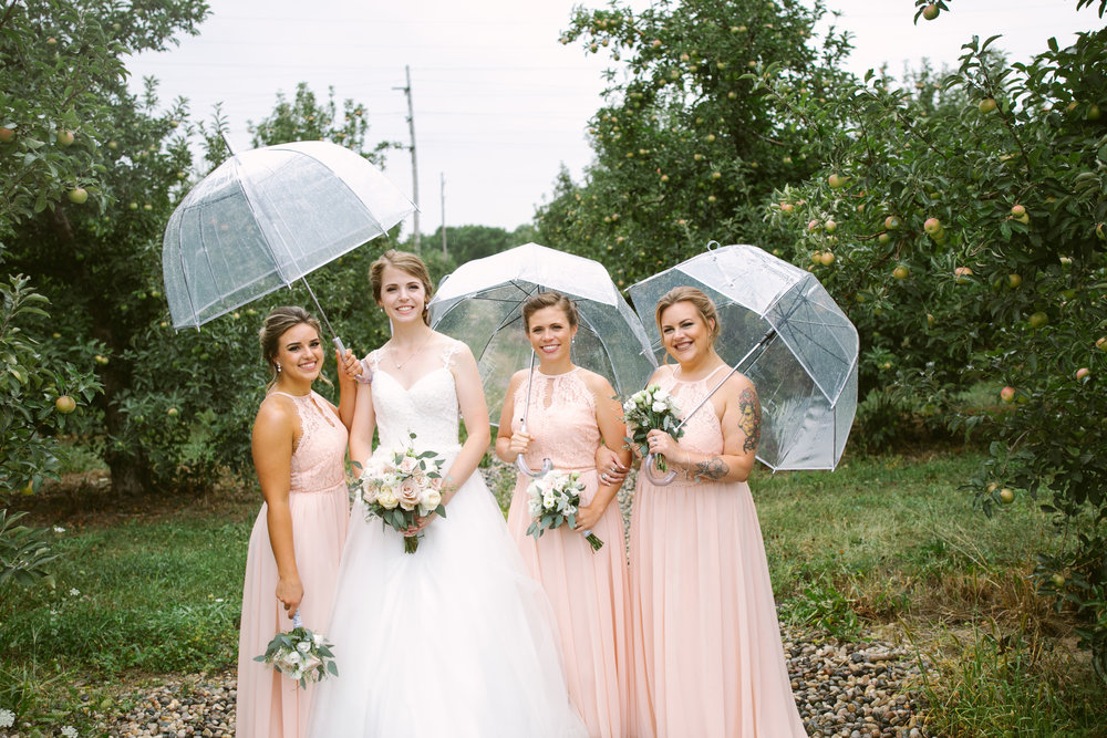 grandrapidswedding_grandrapids_grandrapidsweddingphotographer_countrywedding_orchardwedding_rainyweddingday_rain_summerwedding_grandrapidsphotographer_luna_lunawedding_jessicadarling_jdarlingphoto_ericaandaj034.jpg
