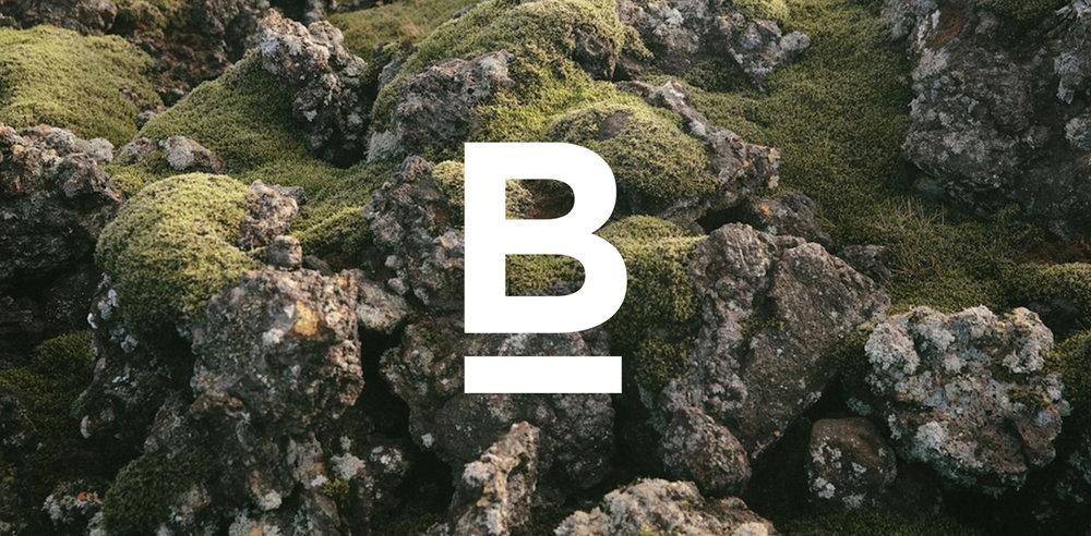 BIS01.jpg