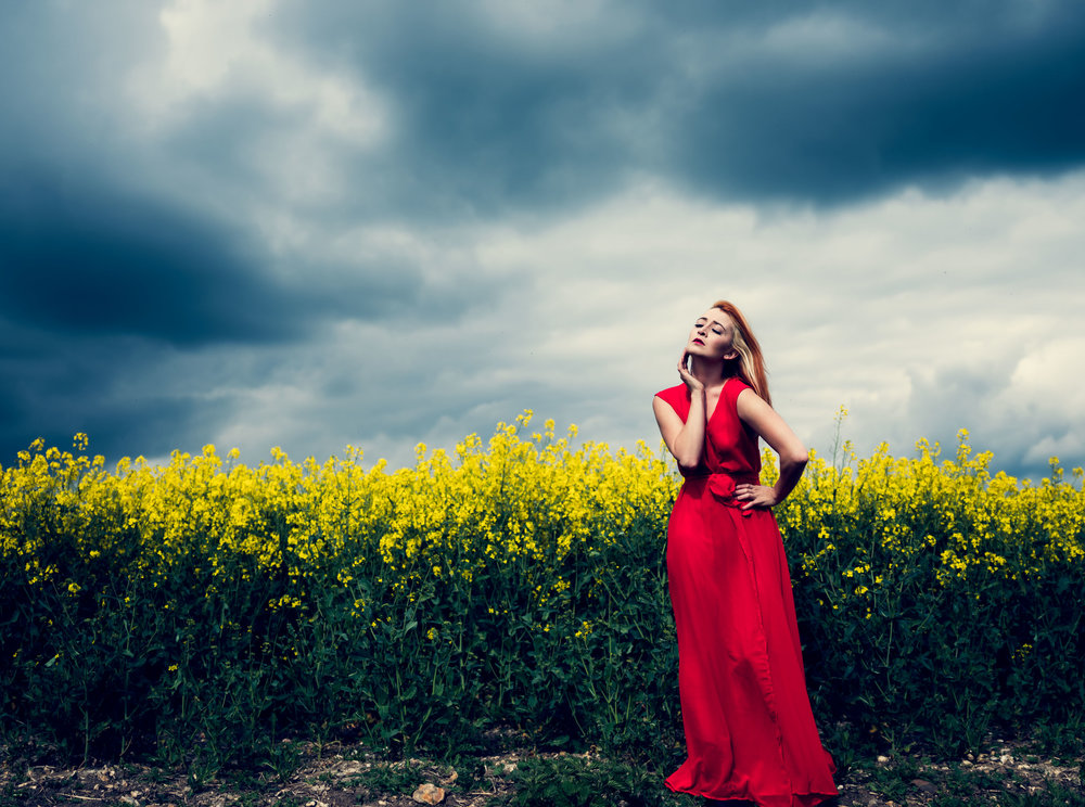 PheonixRed-fineart-yellowfield