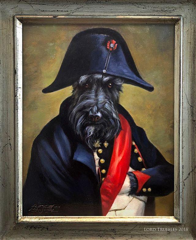 "Detail of Gus as ""Napoleon"". (Oil paint on 8x10"" panel.) . . #dogsofinstagram #dog #dogs #dogstagram #dogsofinstaworld #dogs_of_instagram #dogart #pet #petart #dogpainting #petportrait #oilpainting #art #animals #animalart #lordtruffles #royalpetportrait #regal #portrait"
