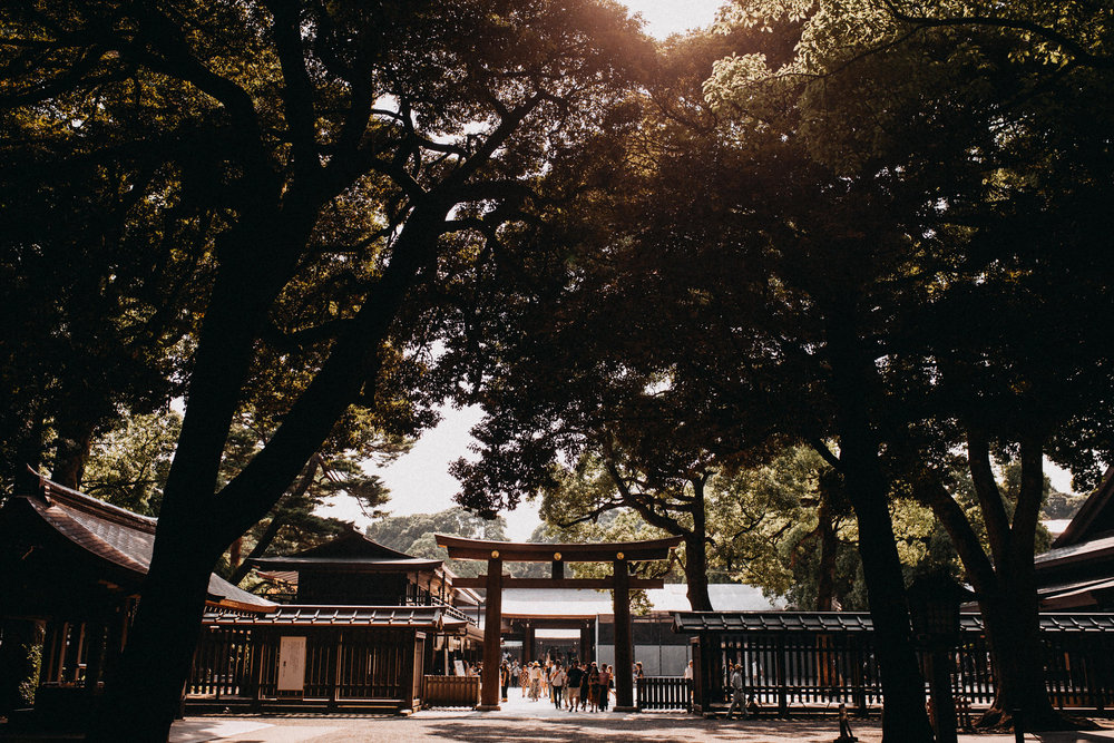 View of Meiji Jingu Shrine. Reasons why to visit Tokyo Japan include this beautiful place