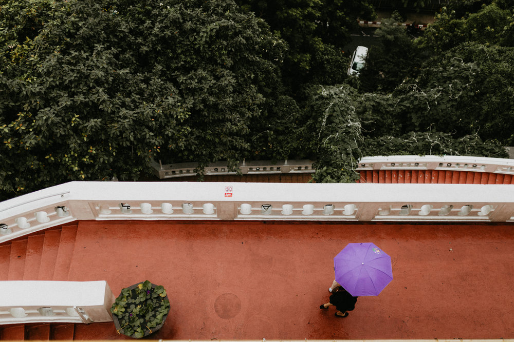 purple umbrella at golden mountain temple.jpg