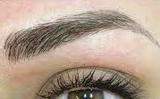 brow (1).jpg