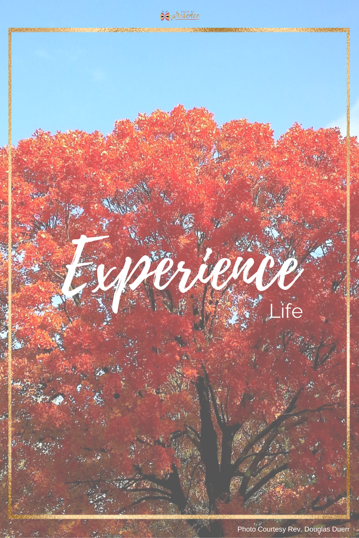 Motivational Mindful Monday - Experience Life Path of Presence Rev Douglas Duerr