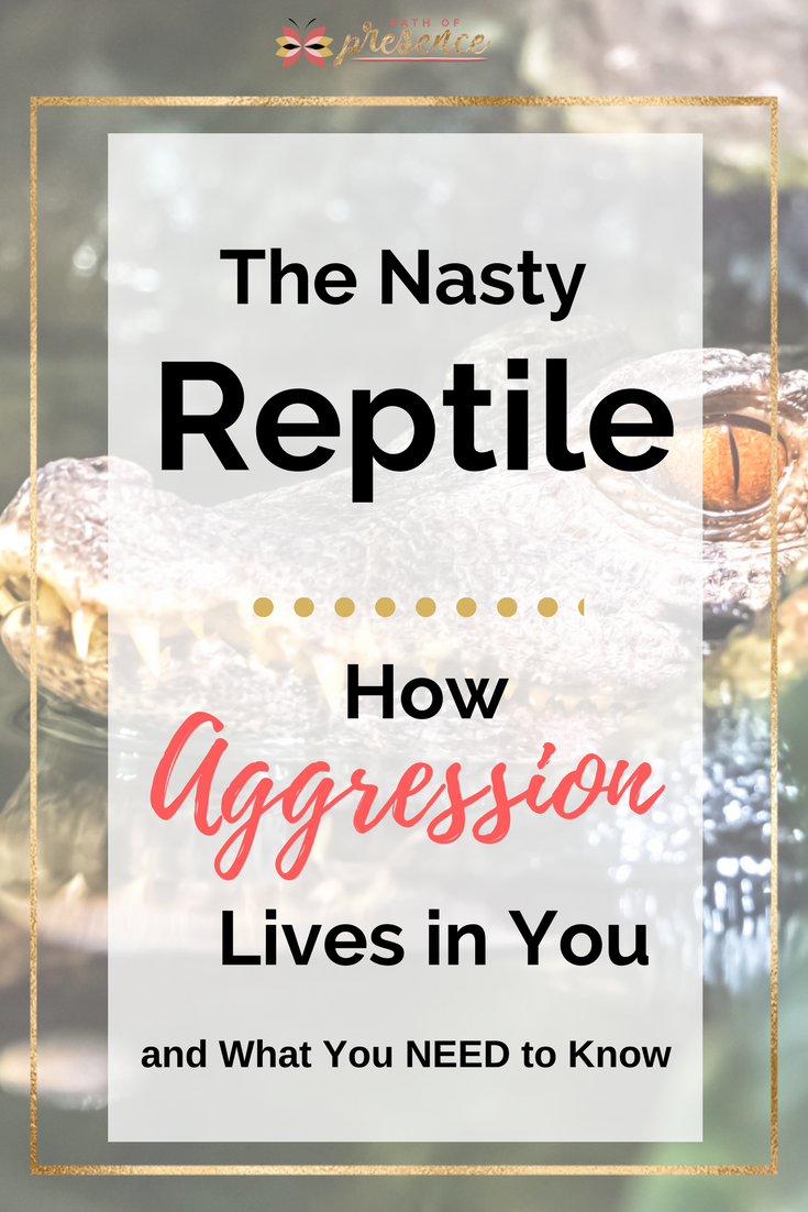 Reptilian Brain - How Aggression Lives in You and What You Need to Know :: Path of Presence :: 4 Steps to Calming Down Practice