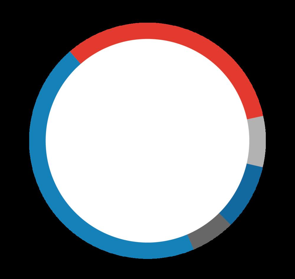 - 45% Hispanic/Latino33% Black/African American9% Asian7% Multi-racial/other6% White