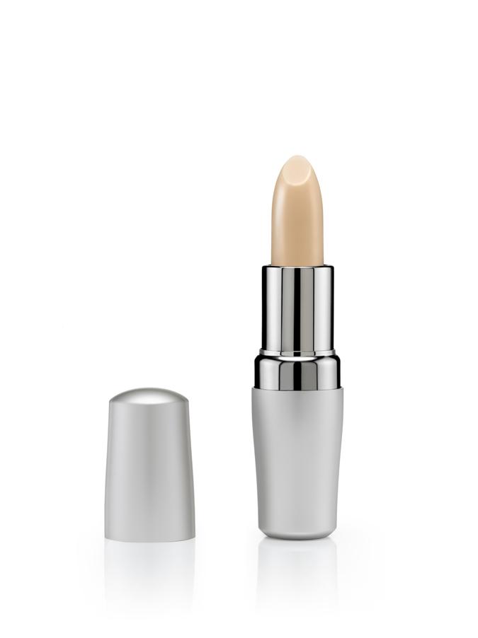 Shiseido-Lip-Stick_final.jpg