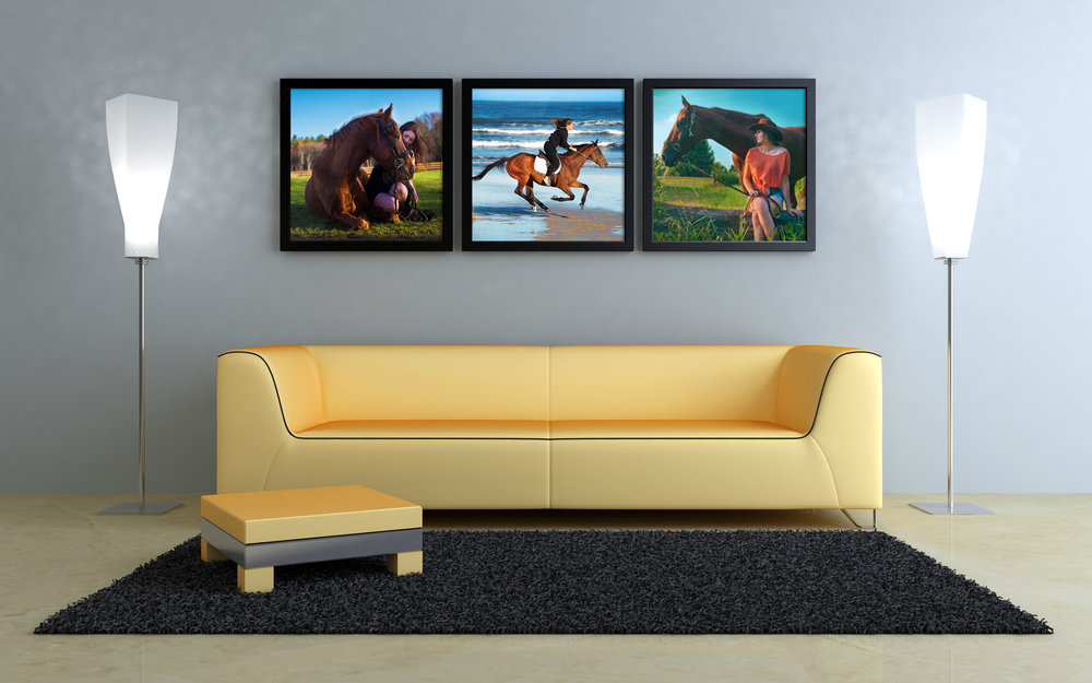 PRINTS AND PRODUCTS - As much as we are in the digital age, there's something timeless about prints that can never be replaced. Decorate your home with memories of you and your four-legged partner with an assortment of sizes, styles, and dimensions to make that perfect wall arrangement. From prints to canvas wraps, there are plenty of choices to find the exact arrangement for your home or office.