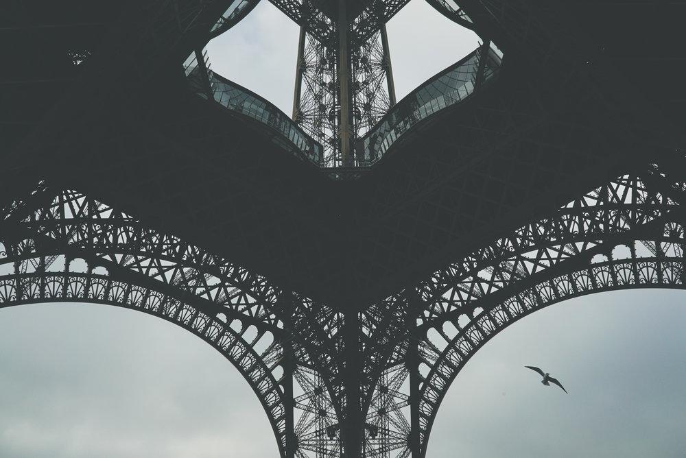 SCi 2016 10_Paris-0547.jpg