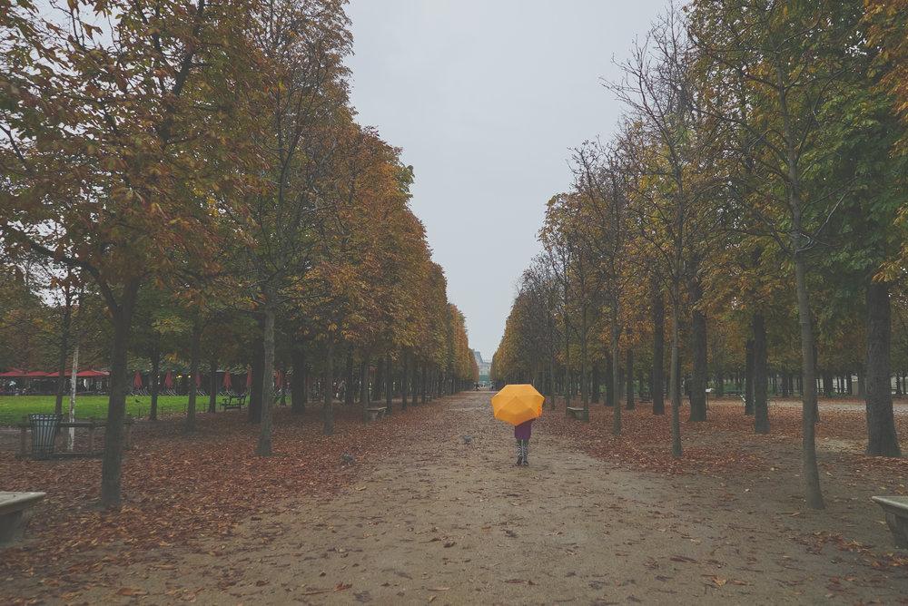 SCi 2016 10_Paris-0226.jpg
