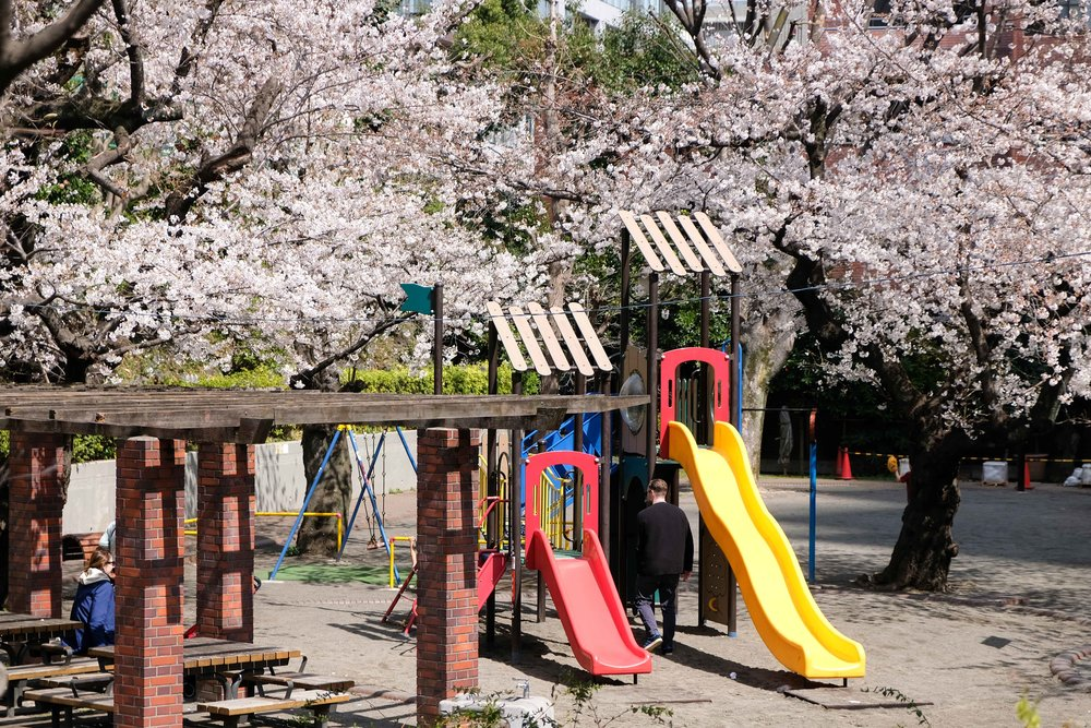 thewanderingcam_tokyo_sakura_diaries_playground-8558.jpg