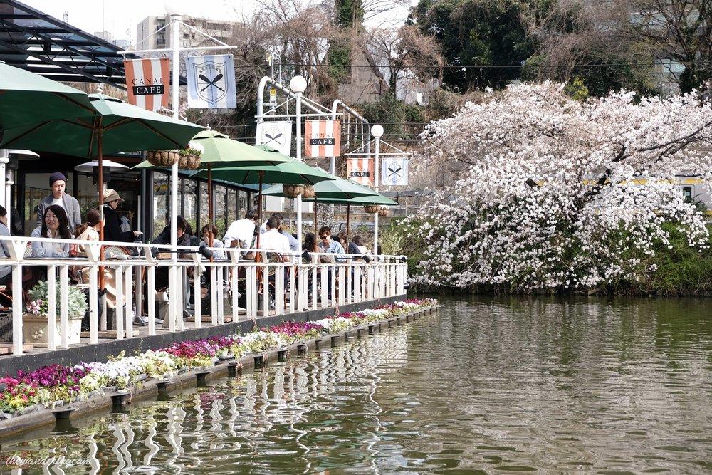 thewanderingcam_tokyo_sakura_canalcafe-8610.jpg