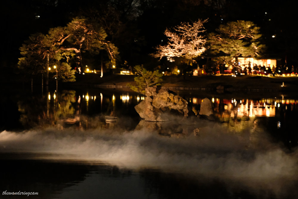 thewanderingcam_tokyo_sakura_rikugien-8931.jpg