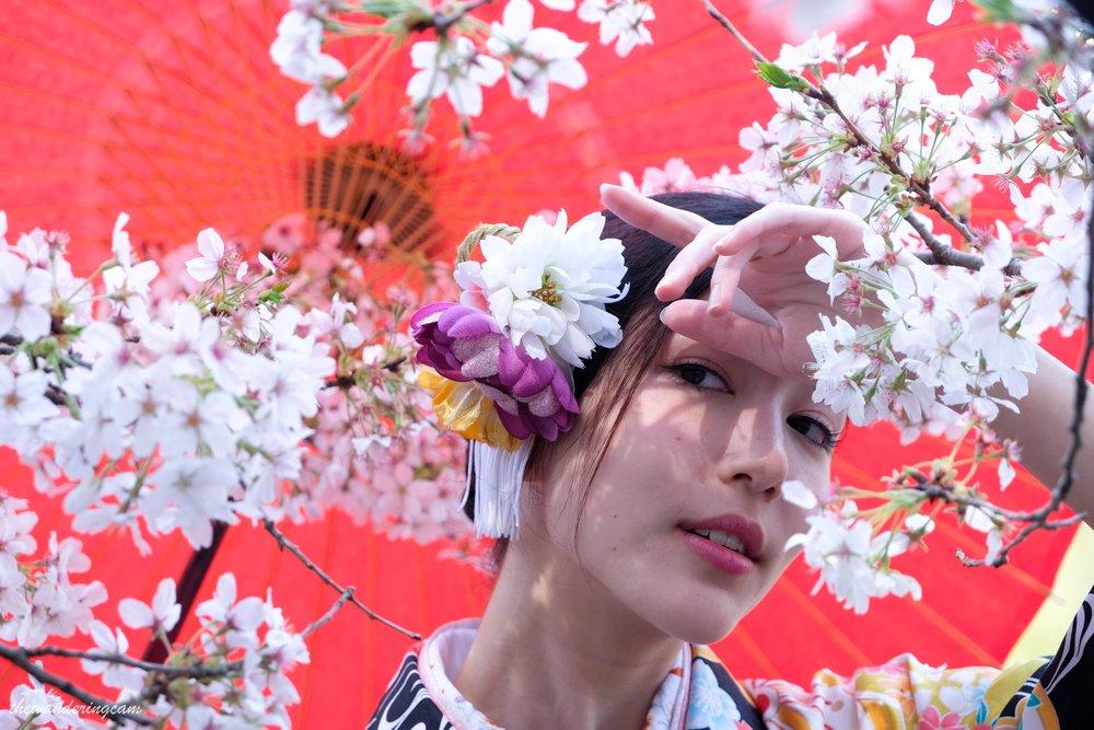 thewanderingcam_sakura_kimono-9554.jpg