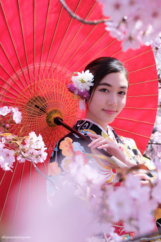 thewanderingcam_sakura_kimono-9450.jpg