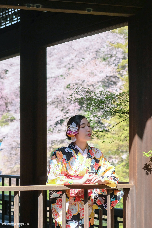 thewanderingcam_sakura_kimono-9483.jpg