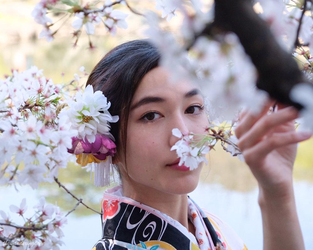 thewanderingcam_sakura_kimono-1354.jpg